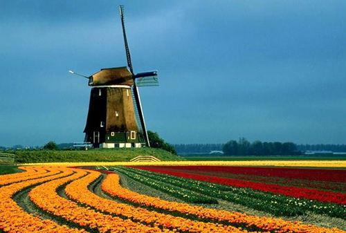 荷兰签证的有效期和停留期分别是多久?申请所需材料有哪些?